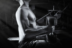 Close up of muscular bodybuilder guy doing exercises with weights. Stock Images