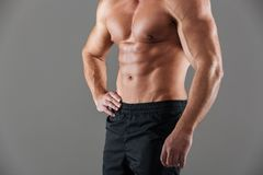 Close up of a muscular fit male bodybuilder torso. Isolated over gray background Royalty Free Stock Image
