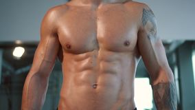 Close up muscular male sport body in gym stock video footage