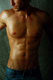 Close-up Muscular male torso photo. Stock Photo