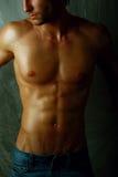 Close-up Muscular male torso photo. Stock Photo