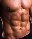 Close up of muscular male torso. Close up of sweat muscular male torso Stock Images