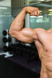 Close-up of muscular man flexing muscles Royalty Free Stock Image