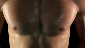 Close up muscular mans body during workout. stock video footage
