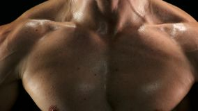 Close up muscular sweaty chest of sportsman. stock video