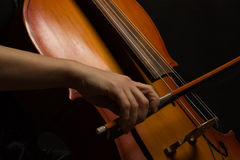 Close up musician hands with cello Stock Image