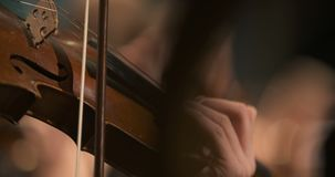 Musician playing violin. Close-up of musician playing violin, classic music background. Female musician playing cello on musical event stock footage