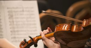 Musician playing violin. Close-up of musician playing violin, classic music background. Female musician playing cello on musical event stock video