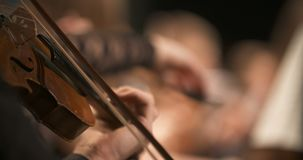 Musician playing violin. Close-up of musician playing violin, classic music background. Female musician playing cello on musical event stock video footage