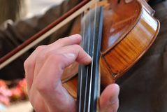 Close up of musician's hands on neck of violin Stock Images