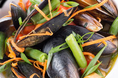 Close up of mussels with vegetables Royalty Free Stock Photo