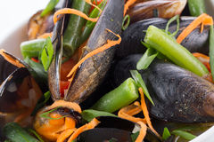 Close up of mussels with vegetables Stock Photos