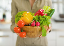 Close up na placa dos vegetais na cozinha à disposição da dona de casa Fotos de Stock