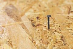 Close up of nail Royalty Free Stock Images