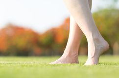 Woman`s barefeet walking on the grass. stock photography
