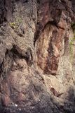 Close up natural do fundo da textura do penhasco da rocha Foto de Stock Royalty Free
