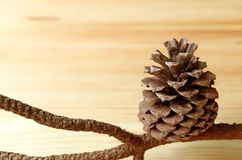 Natural dry pine cone with branch on light brown wooden background Stock Photo
