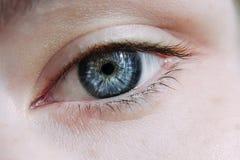 Close up of natural female eye Royalty Free Stock Image