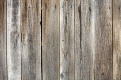 Close-up of natural old vintage weathered gray brown unpainted solid wooden fence or gate of planks and boards. Ecological texture royalty free stock photography