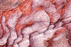 Close up natural vermelho claro da rocha da fatia da textura abstraia o fundo Foto de Stock