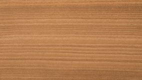 Close up natural wood grain texture / background. Wooden backdrop stock image