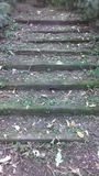 Nature trail steps close up Stock Photography