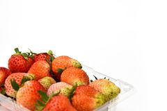 Close up near ripe red strawberry in plastic transparency pack, isolated on white background, copy space write. Fragaria × ananassa Royalty Free Stock Photography