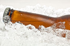 Close-up of neck, bottle of beer on ice. Close-up of the neck of an ice cold beer, resting in crushed ice Royalty Free Stock Image