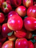 Close-up of nectarine. Close up of ripe nectarine with green leaves Stock Photos