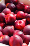 Close up of nectarines Stock Photography