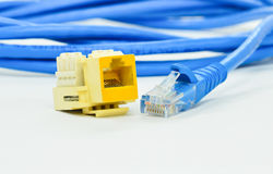 Close up network connection plug RJ-4 Stock Photography