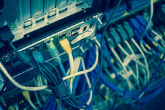 Close up of network internet cables, patch cords connected to bl Stock Images