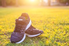 New pairs of black running shoes / sneaker shoes on green grass. Close up new pairs of black running shoes / sneaker shoes on green grass field in the park at Stock Photo