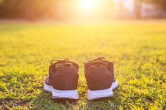 New pairs of black running shoes / sneaker shoes on green grass. Close up new pairs of black running shoes / sneaker shoes on green grass field in the park at Stock Photos