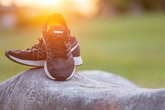 New pairs of black running shoes / sneaker shoes on green grass. Close up new pairs of black running shoes / sneaker shoes on green grass field in the park at Royalty Free Stock Images