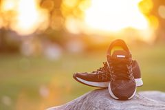 New pairs of black running shoes / sneaker shoes on green grass. Close up new pairs of black running shoes / sneaker shoes on green grass field in the park at Royalty Free Stock Photos