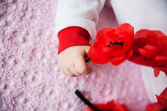 Close-up of newborn baby hand holding flowers Stock Image
