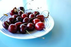 Close-up no people day cherries plate blue color Royalty Free Stock Photos