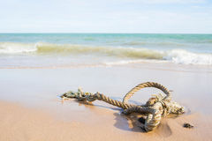 Close up of a noose on the beach Royalty Free Stock Photo