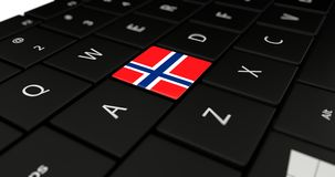 Close up of Norway button. Royalty Free Stock Photos