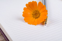 Close up of notebook Stock Photography