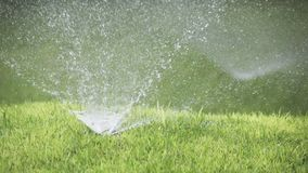 Close up of a nozzle of a nozzle for spraying of water of system of automatic watering of a lawn with brightly green. Subshort-haired lawn grass in sunny day stock video footage