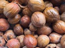 Close up of nutmeg seeds. Close up of pile of nutmeg seeds, Balik Pulau, Penang, Malaysia Stock Photography