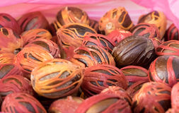 Close up of nutmeg selection at the market Royalty Free Stock Images