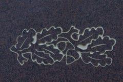Oak foliage and acorns on stone surface. Close up on oak foliage and acorns on stone surface. Memorial Stone, Johannisfriedhof, Dresden, Germany Royalty Free Stock Images