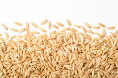 Close up of oats Royalty Free Stock Photos