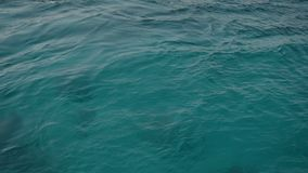 Close-up of the ocean water texture, sea. Slow Motion.  stock video footage