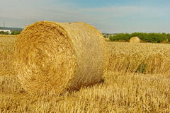 Close-up Of Bale Of Wheat Strows Royalty Free Stock Photos