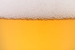Close Up Of Beer With Foam. Stock Images