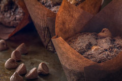Free Close Up Of Chocolate Chip Muffins Royalty Free Stock Image - 70923256